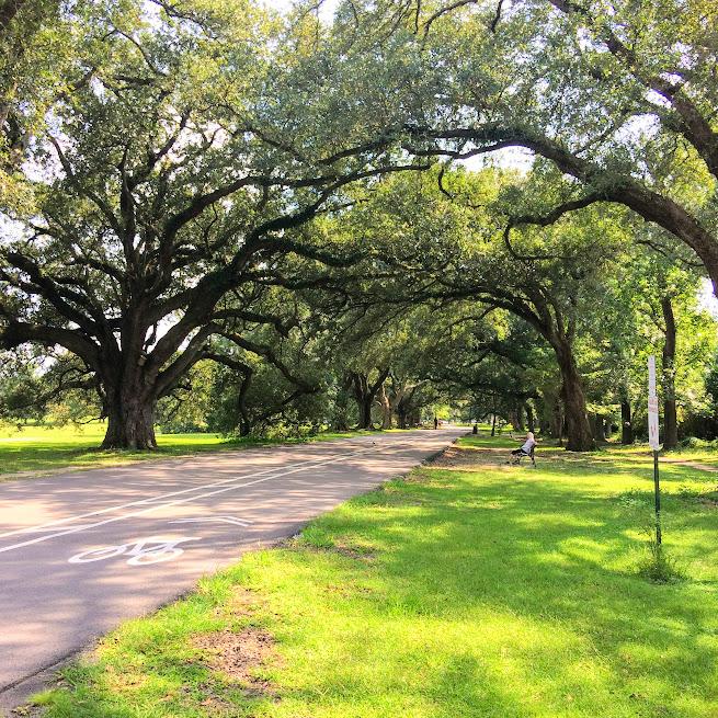 Best Parks Around New Orleans