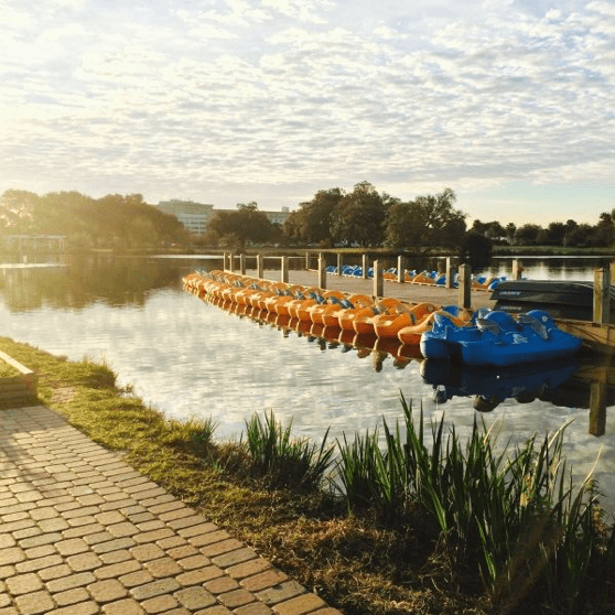 Best Things to Do at New Orleans City Park